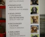 worlddogshowchampionnatdefrance_2011_img_7186