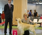 worlddogshowchampionnatdefrance_2011_img_7317