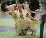 worlddogshowchampionnatdefrance_2011_img_7885