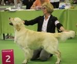worlddogshowchampionnatdefrance_2011_img_8500